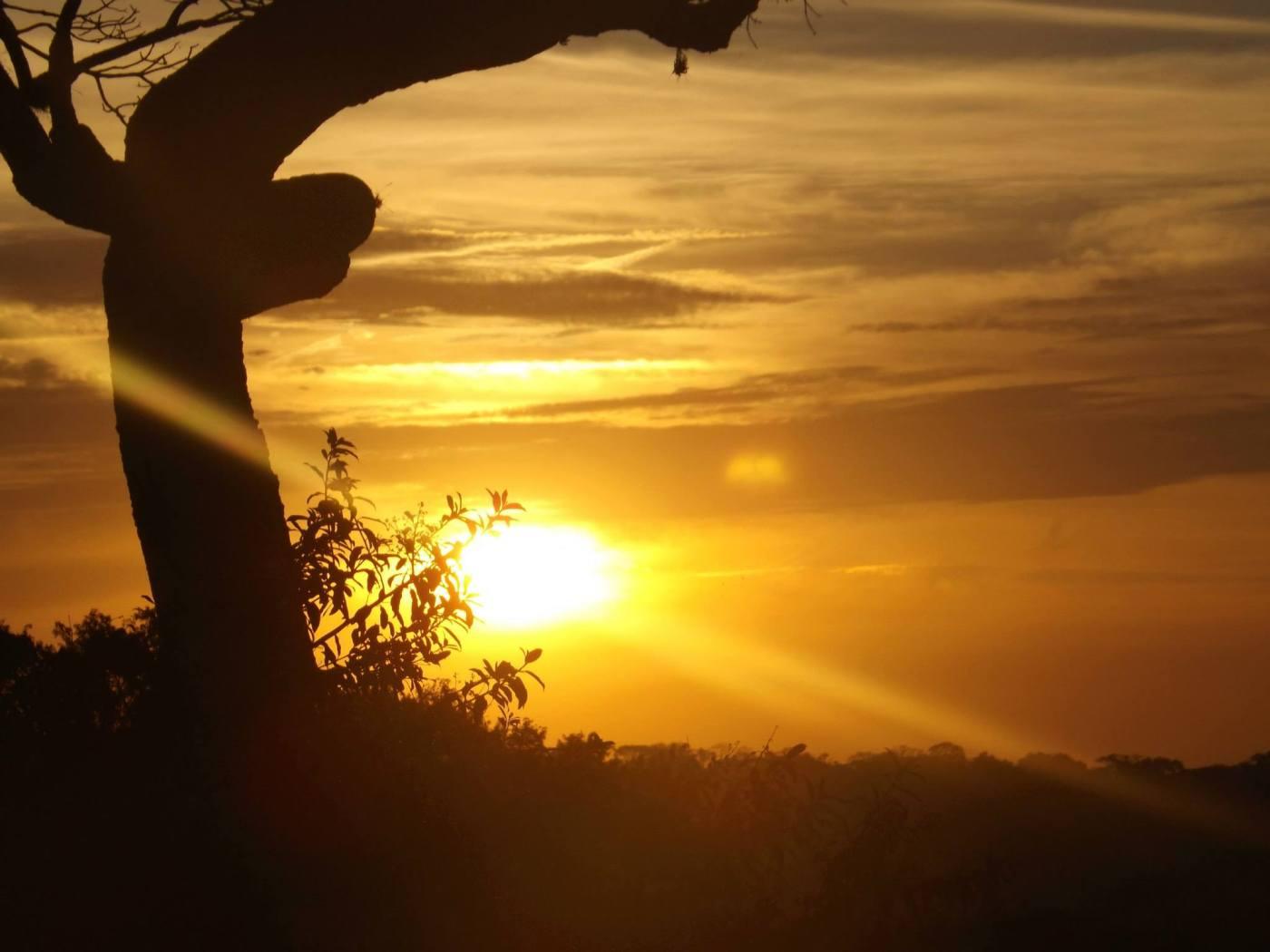 Sobre o Morro do Araçoiaba